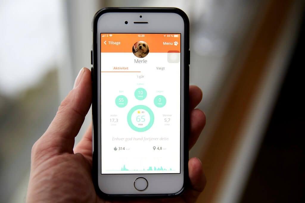 PRESSEMEDDELELSE: Nyt smartwatch til hunde øger livskvaliteten for både kæledyr og ejer (2)