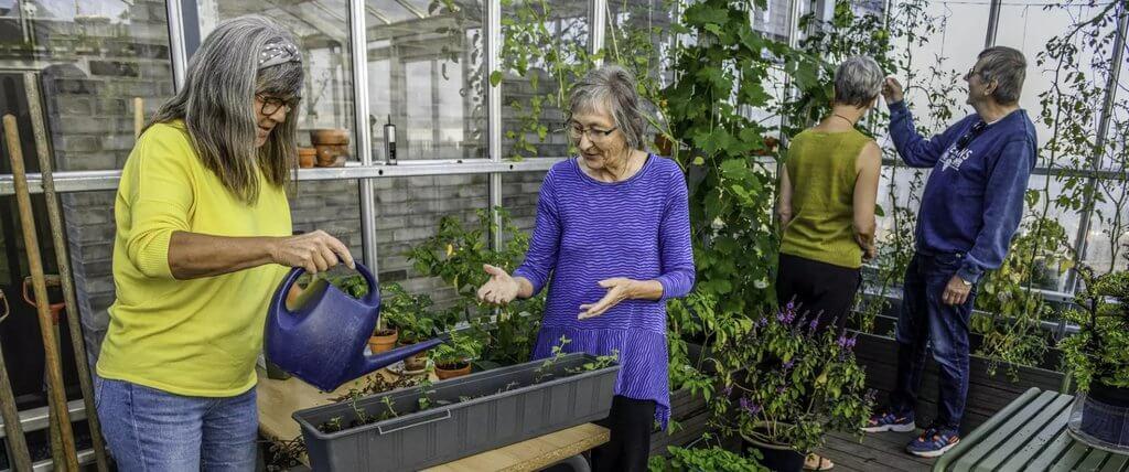 PRESSEMEDDELELSE: Antallet af seniorbofællesskaber stiger markant