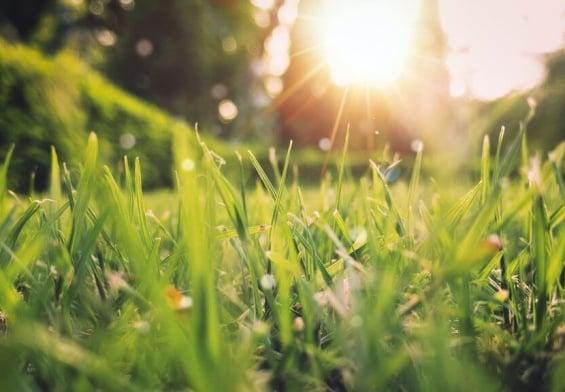 PRESSEMEDDELELSE: Nyd solen med omtanke – og afstand