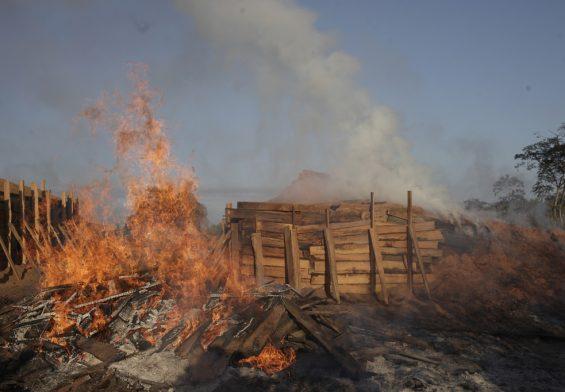 PRESSEMEDDELELSE: Når danskerne griller går regnskoven op i røg