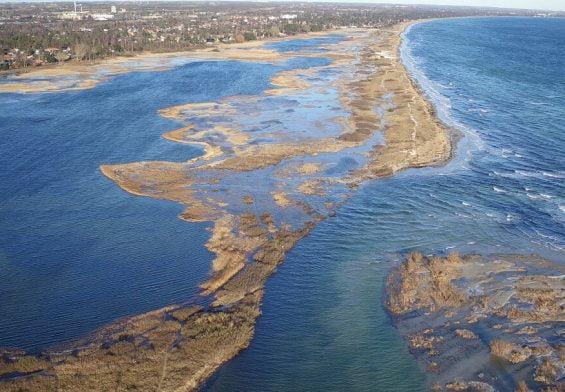 PRESSEMEDDELELSE: Køge Kommune og NIRAS starter et af Danmarks største kystbeskyttelsesprojekter