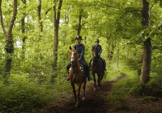 PRESSEMEDDELELSE – Ny afmærket hesterute ved Tronsøen og Grindsted Plantage