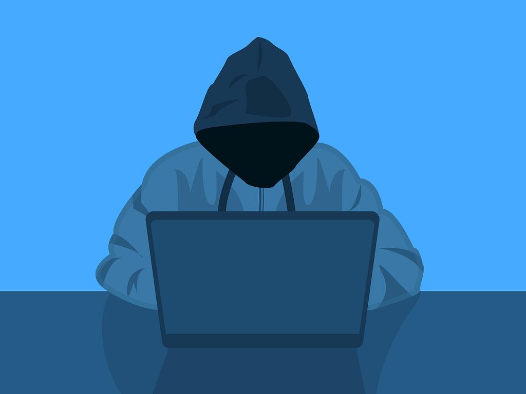 PRESSEMEDDELELSE – Sådan undgår du at blive snydt på nettet